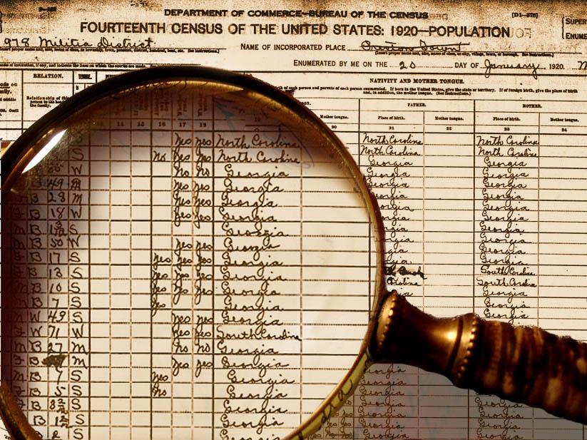 Census data picture
